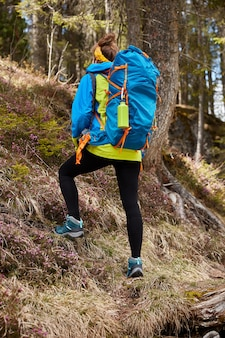 Photo of female traveler overcomes up hill, treks in forest, wears big blue rucksack on back, makes step