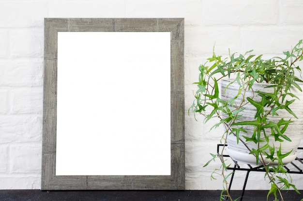 Photo frame and beautiful plant in concrete pot