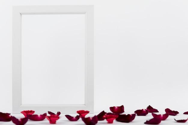 붉은 꽃잎 사이의 사진 프레임