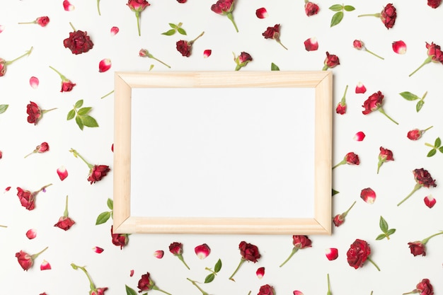 Photo frame between composition of wonderful red flowers and green leaves
