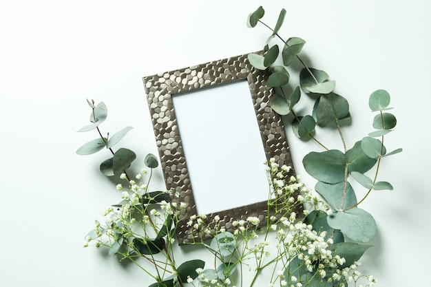 Photo frame, eucalyptus and gypsophila isolated on white