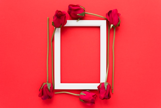 Photo frame between fresh flowers
