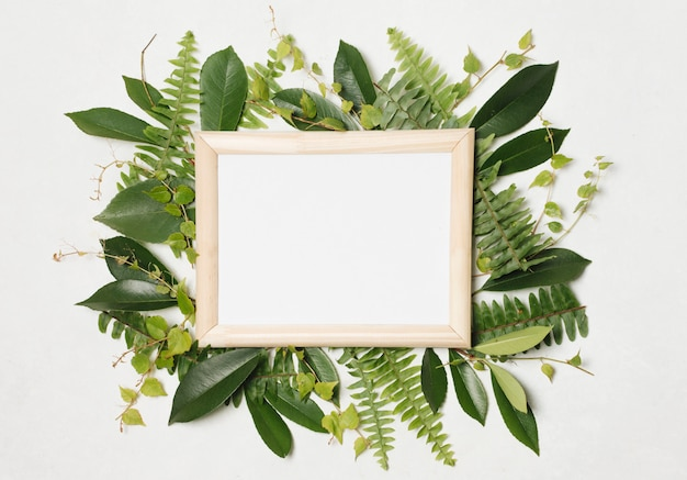 Photo frame between green plants
