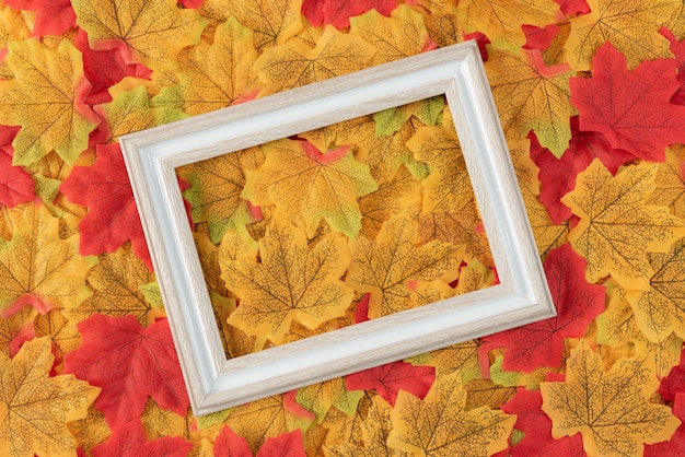 Photo frame on multicolor maple leaves background