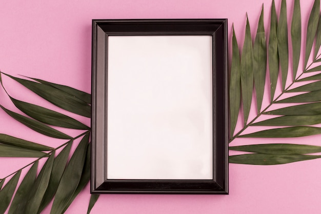 Photo frame and plant branches