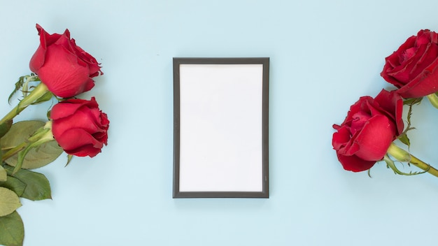 Photo frame between red flowers