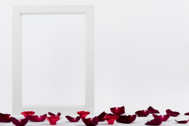 Photo frame between red petals