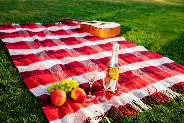 Photo of guitar, fruit, champagne and stemwares on plaid at park.