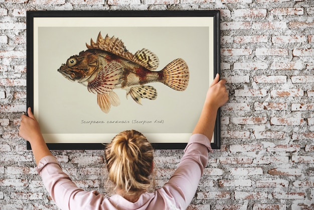 Photo of hand drawing fish in a frame