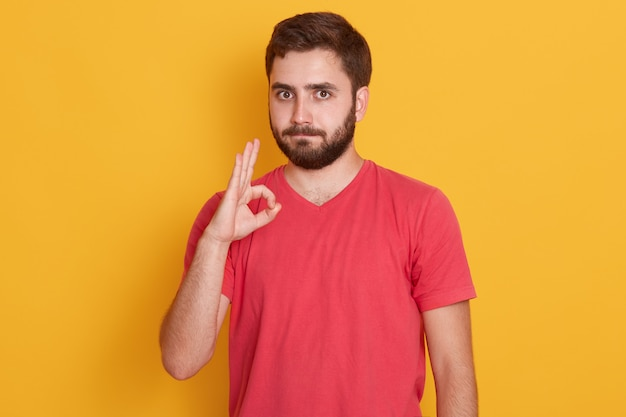 Photo of handsome man with dark hair, wearing yellow t shirt, isolated on yellow, showing ok sign, bearded man with calm facial experession. people concept.
