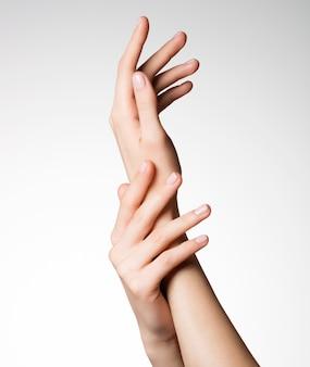 건강한 깨끗한 피부를 가진 아름다운 우아한 여성 손의 사진