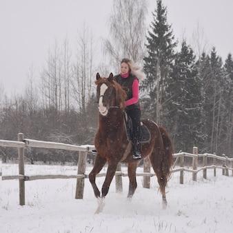 冬の背景に馬に乗ってかわいい女の子の写真