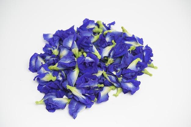 Фотография свежих цветов гороха, используемых для чая.