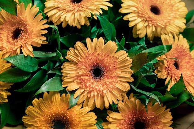 美しい花束の緑の花びらとオレンジの花の写真 Premium写真
