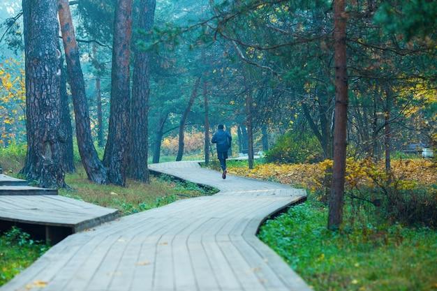 秋の公園で走っているアスリートの男性の写真。