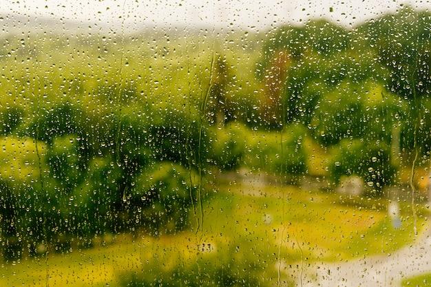 窓からすに水滴の写真