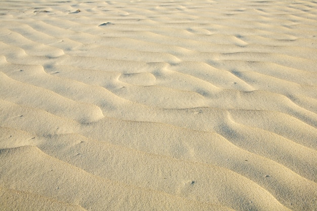 A photo of sand in the beach