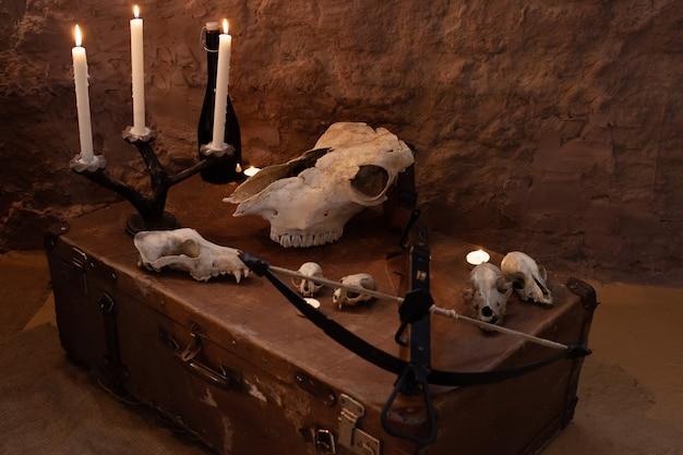 ハロウィーンのスタジオのフォトゾーン。諸聖人の日のお祝いのための劇的な風景。 10月