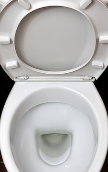 A photograph of a white ceramic toilet bowl in the dressing