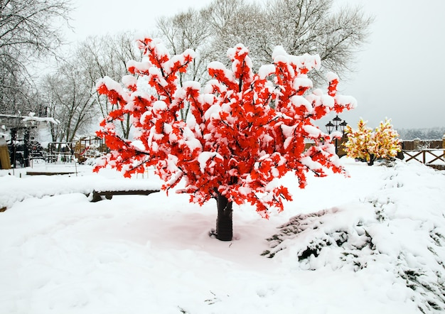 인공 나무를 가까이 촬영. 겨울