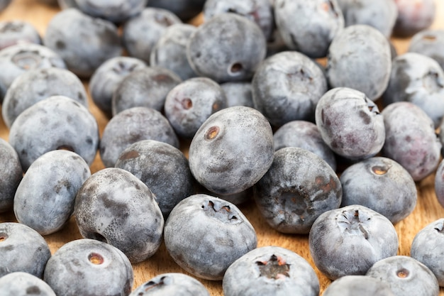 블루 베리의 수확 익은 열매를 가까이 촬영,
