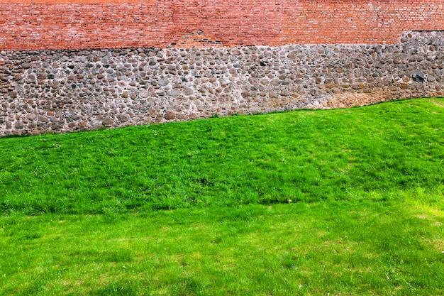 古代の城の城壁から成長している緑の草の写真のクローズアップ