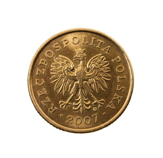 白いコイン、ポーランドのペニーの写真のクローズアップ