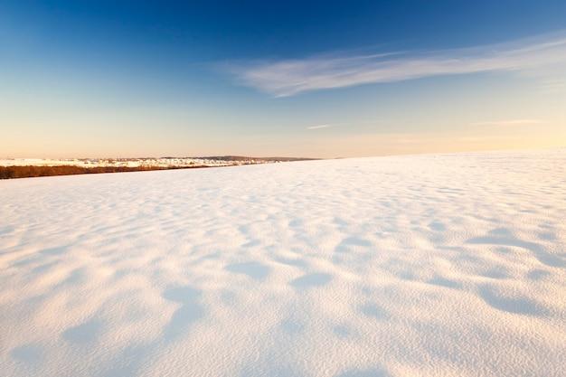 Сфотографировано поле, покрытое снегом. зимний сезон