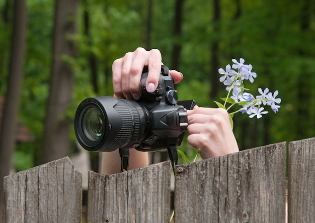 Photographer are taking pictures of nature. green forest. slr camera and hands with flowers. selective focus.