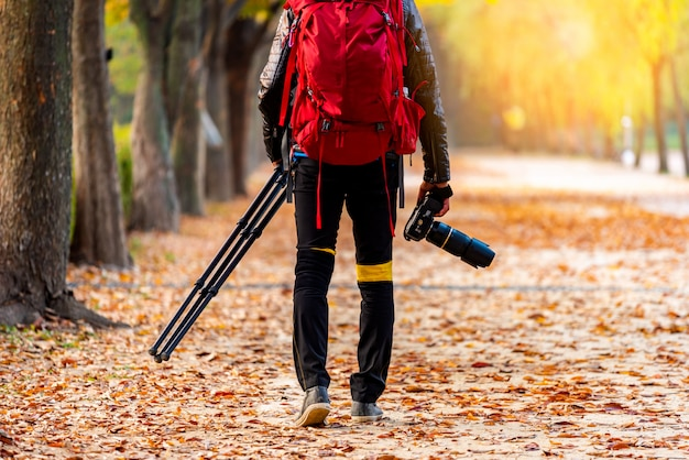 Photographer taking with camera and tripod in autumn background, seoul korea.