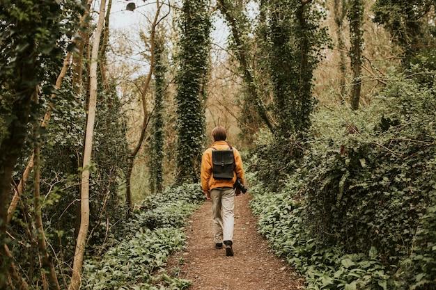 Фотограф гуляет по лесу на открытом воздухе, вид сзади