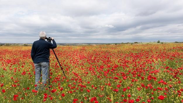 Фотограф со штативом фотографирует поле маков