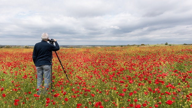 Photographer with tripod taking a picture of a field of poppies