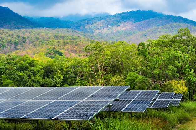 Фотоэлектрические модули солнечная электростанция в зеленом дереве на пейзаже, вид на озеро, природа, лес, вид на горы, весна, на фоне белых облаков