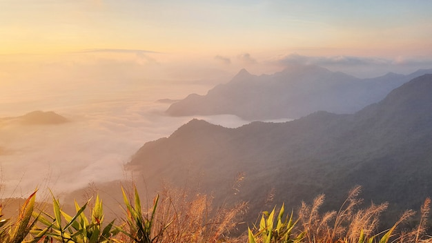 Chiang raiのphu chi fa森林公園自然景観thailaの最北端の州