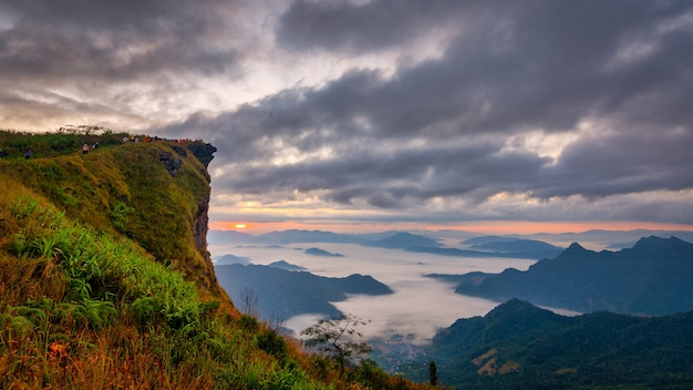 Phu chifa mountain with fog and cloudy sky in thailand
