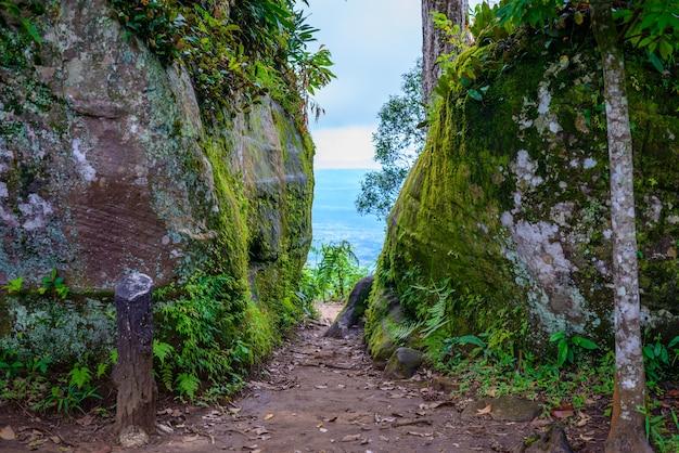 Phu hin rong kla national park, phitsanulok province