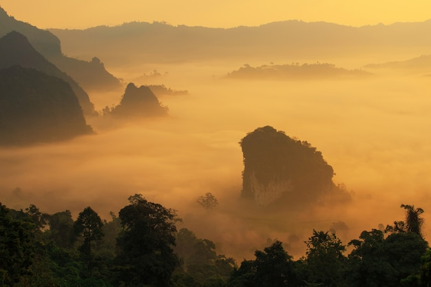 太陽の光と朝の霧の雲phu lang ka、パヤオ、タイで