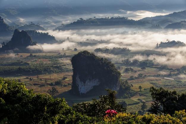 Национальный парк phu langka в провинции phayao