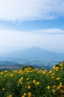 Phu pa poh、ルーイ州、タイの美しい風景。