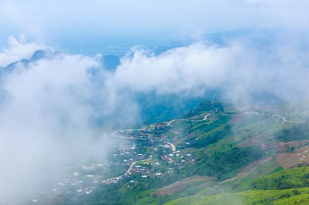 Phu tub berk mountain with mist, thailand