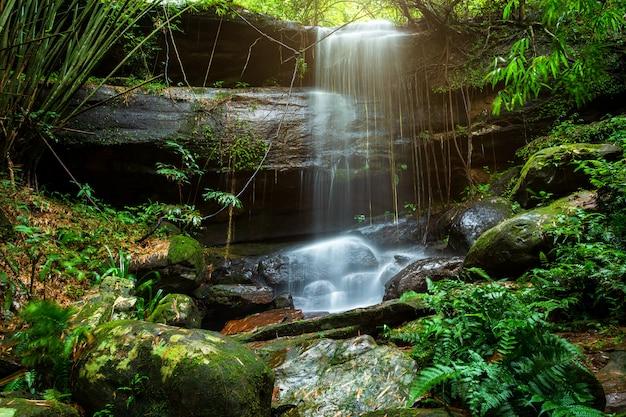 タイ、ピサヌロークのphuhinrongkla国立公園nakhon thai districtで熱帯雨林の風景の中のサイフォン(saifon)滝