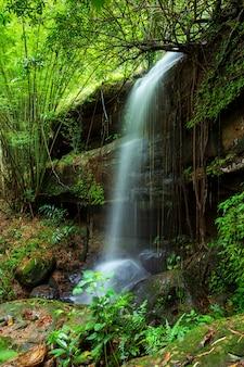 Phuhinrongkla国立公園の熱帯雨林景観のサイフォン滝