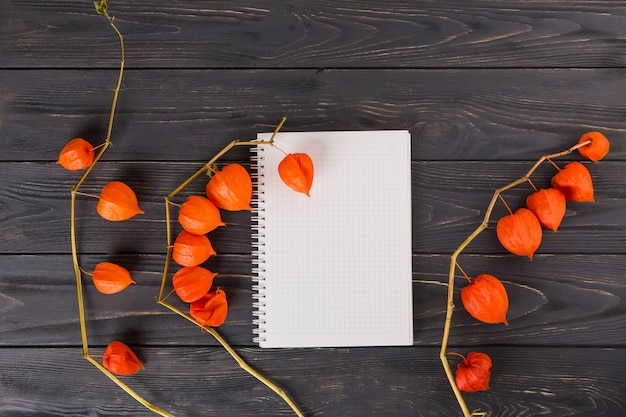 Physalis branches with notebook on wooden table