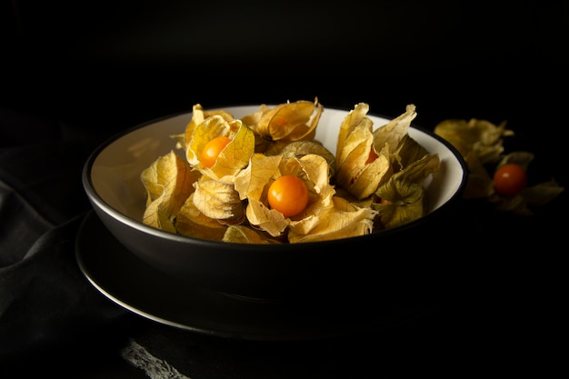 Physalis flowers or fruits on a black background.