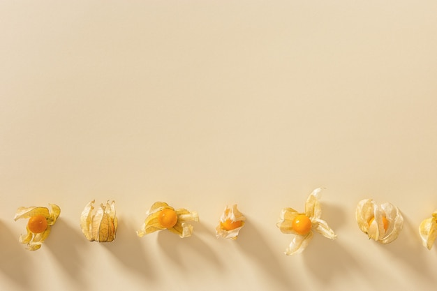 Physalis fruit or physalis peruviana small golden berries on beige color paper background