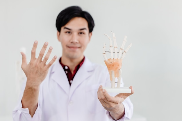 Physical doctor with hand palm model showing anatomy in hand muscular system tendons ligaments