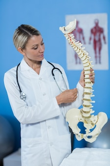 Physiotherapist holding spine model