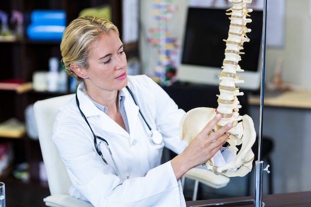 Physiotherapist looking at spine model