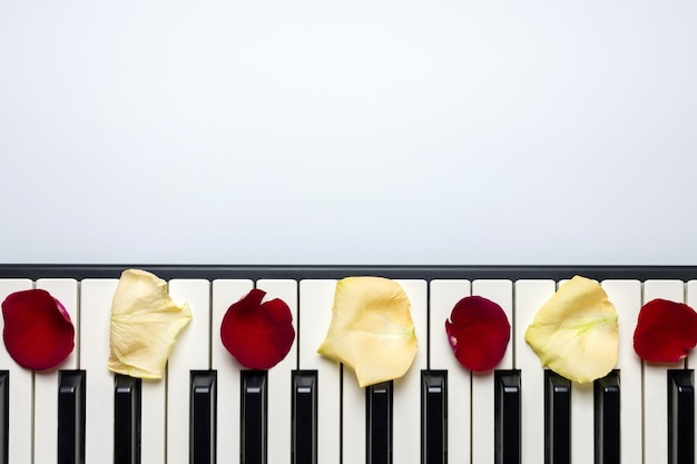 Piano keys with red and white rose flower petals, isolated, top view, copy space.